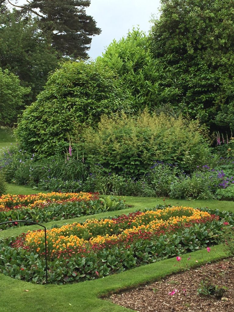 The garden at Down House